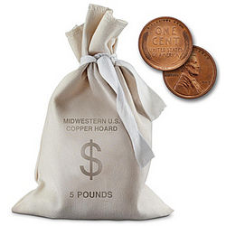 US Lincoln Penny Canvas Bag