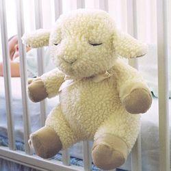 Comforting Sounds Sleep Sheep