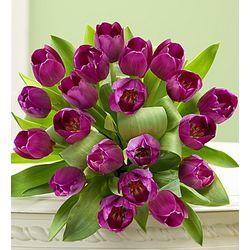 Signature Purple Tulips Bouquet