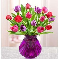 Tulip Garden Valentine's Day Bouquet