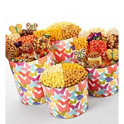 Butterfly Snack Assortment and Popcorn Tin