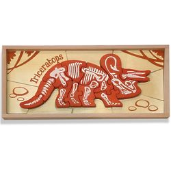 Dinosaur Skeleton Triceratops Chunky Wooden Puzzle