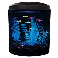 GloFish 3.5 Gallon LED Aquarium Kit