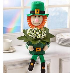 Lucky Leprechaun Planter with Kalanchoe