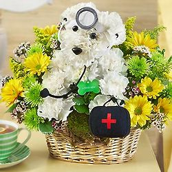 Doggie Howser M.D. Flower Arrangement