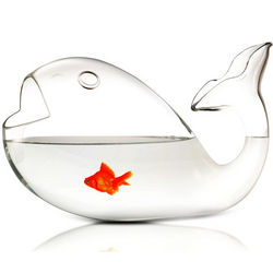 Giona Blown Glass Fish Bowl