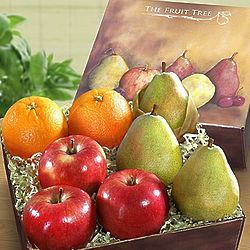 Arbor Harvest Fruit Sampler Gift Box