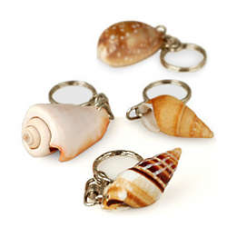 Natural Seashell Keychain