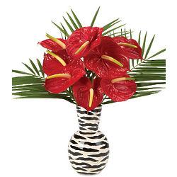 Jungle Love Anthuriums