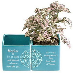 Mom's Personalized Ceramic Flower Pot Set