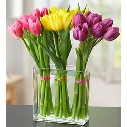 Modern Tulips in Chic Vase