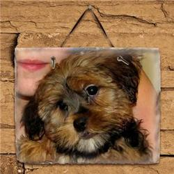 Picture Perfect Personalized Horizontal Slate Plaque