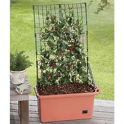 Mobile Veggie Patch Planter