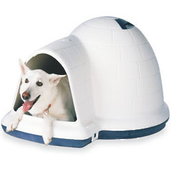 Large Door for Indigo Igloo-Style Dog House
