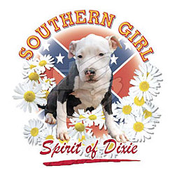 Southern Girl Spirit of Dixie T-Shirt