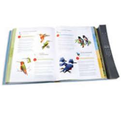 Complete Bird Songs Audio Book