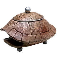 Turtleshell Curiosity Box
