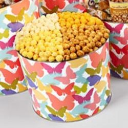 Four Flavor Butterfly Popcorn Tin