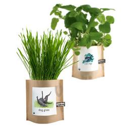 Pet-Friendly Garden in a Bag