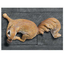 Wall Clinging Squirrel Figure