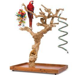 Handcarved Coffea Tree Bird Perch