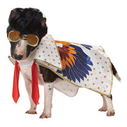 Nothin' But a Hound Dog Canine Costume