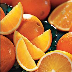 Navel Oranges Lite Size Sampler