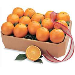 Navel Oranges Large Sampler