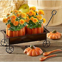 Festive Fall Pumpkin Hayride Bouquet
