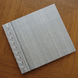 Silver Baby's First Memory Book