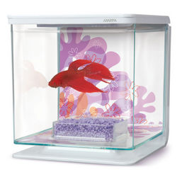 Marina Flower Design Betta Aquarium