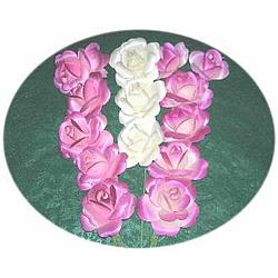 Half Dozen Small Open Wooden Roses