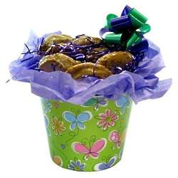 Butterfly Pot Cover with 12 Gourmet Cookies