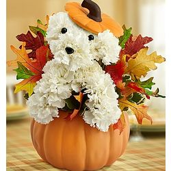 A-Dog-able Flower Basket for Fall