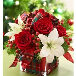 All Wrapped Up for the Holidays Floral Arrangement