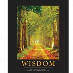 Wisdom Path Motivational Framed Poster