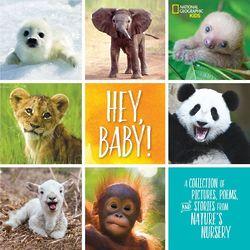 Hey, Baby! Children's Book