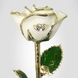 "11"" Wedding Bells Rose"