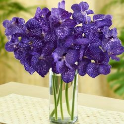 Purple Vanda Orchid Bouquet
