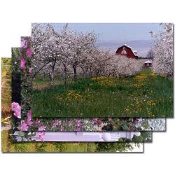 Door County Flower Greeting Cards