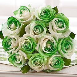 12 St. Patrick's Day Roses