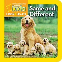 Little Kids Look and Learn Same and Different Book
