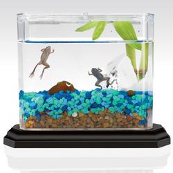 ... aquatic frogs the frog o sphere includes 2 aquatic mini frogs a snail