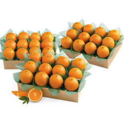 Family Size Navel Oranges