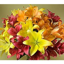 Deluxe Royal Autumn Lilies