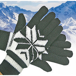 Anti Freeze Alpine Gloves