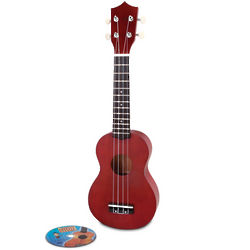 Learn to Play Ukulele Instrument and DVD