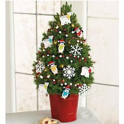 Frosty Canyon Christmas Tree