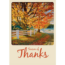 Give-A-Tree Season of Thanks Card