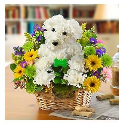 Man's Best Friend Floral Arrangement
